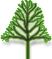 Standard Live Oak Tree Icon